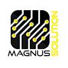 Magnus Solution