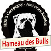 Hameau DES BULLS