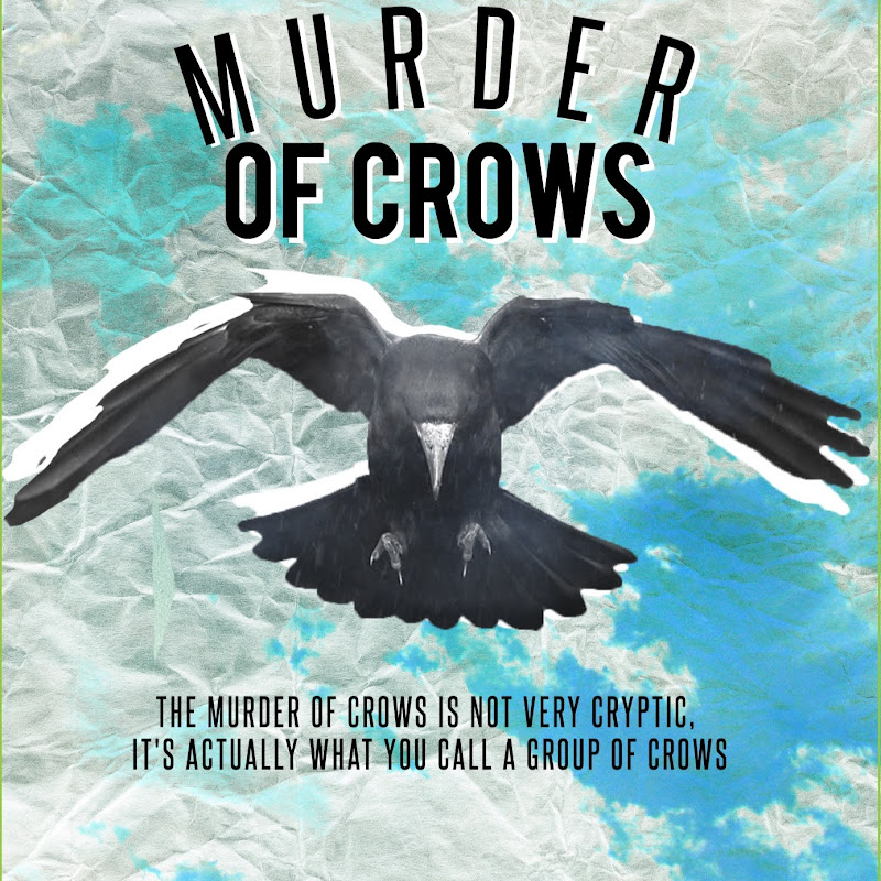 Murder of Crows BK