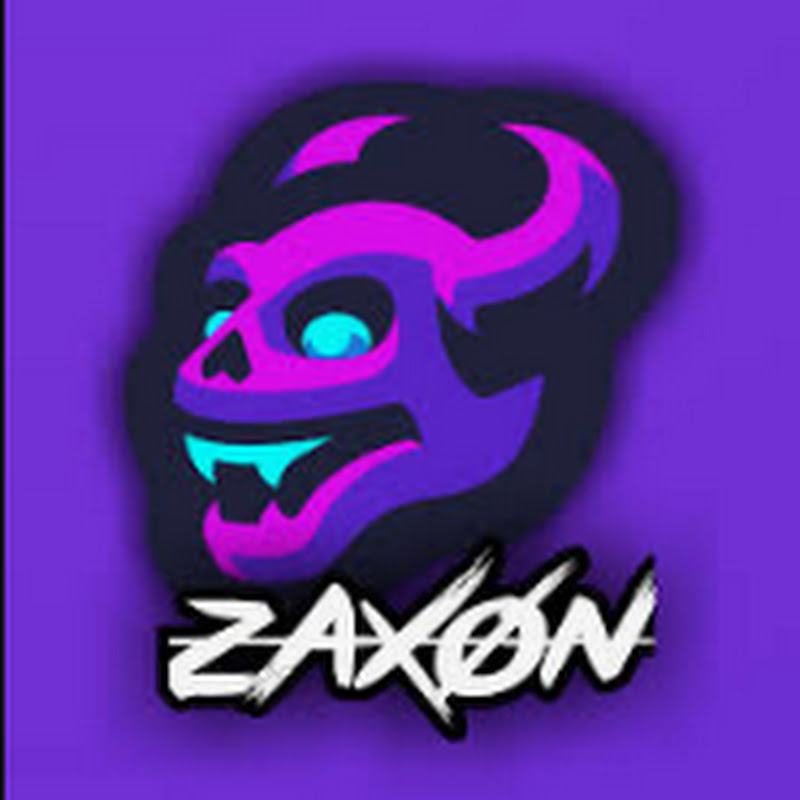 zaxon (1000-subscribers-with-silly-videos)