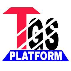 The GS Platform Net Worth