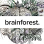 Brainforest  Youtube video kanalı Profil Fotoğrafı