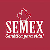 SemexBrasil