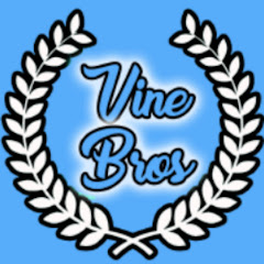 Vine Bros Net Worth