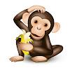 Language Chimp