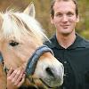 Luuk Teunissen Ausbildungszentrum für Pferd & Reiter