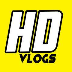 Hyderabad Diaries Vlogs Net Worth