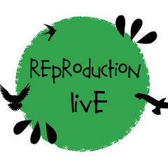 Reproduction LIVE Net Worth