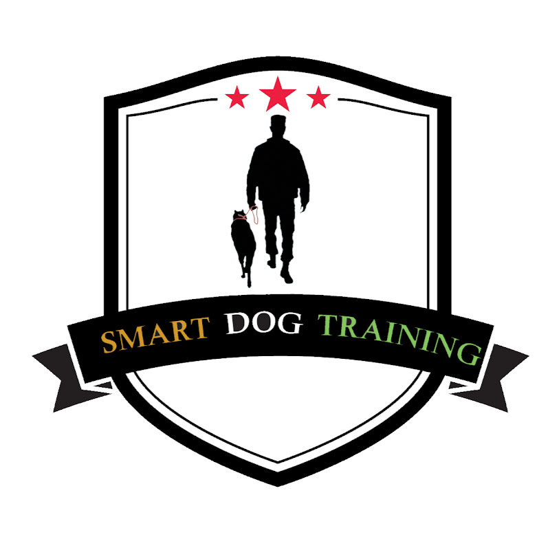 SMART DOGS TRAINING
