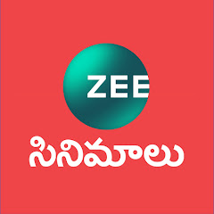 Zee Cinemalu Net Worth
