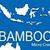 Bamboo MicroCredit