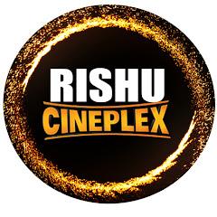 RISHU CINEPLEX Net Worth