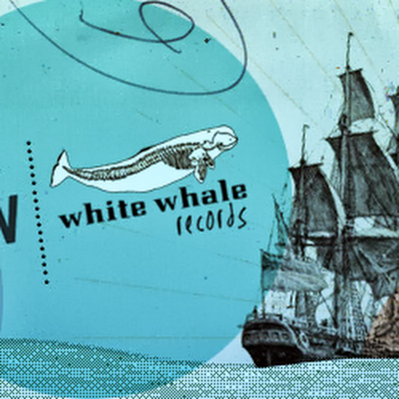 whitewhalers