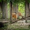 Northwoods Antler Lodge Hunting Ranch