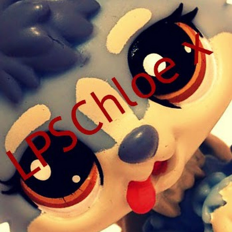 Lps Popular Character As Humans For Sophiegtv Funnycattv
