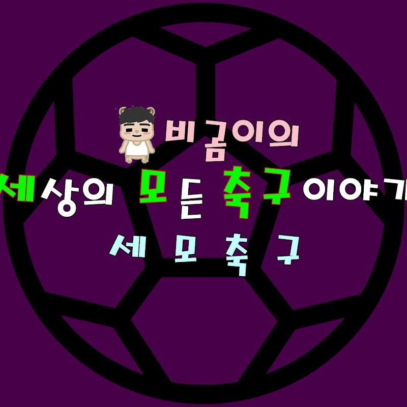 비곰이의 에펨! BGom's Football Manager