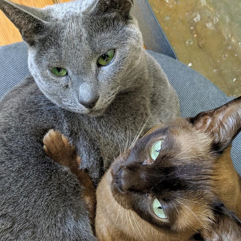 Lena & Matilda