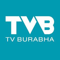 TvburabhaOfficial Net Worth