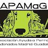 Perros Madrid-Guadalajara