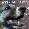 Puppy Mill Free Reno
