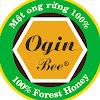 Mật ong rừng U Minh-OginBee