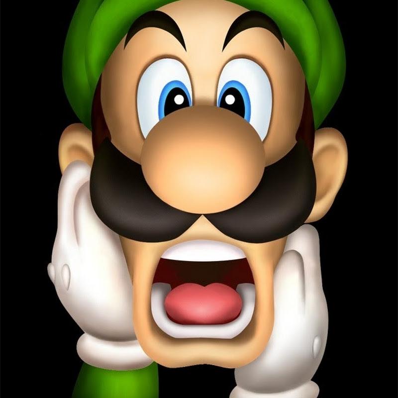 Long-Play Of Newer Super Mario Bros  Wii : Summer Sun