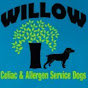 Willow Service Dogs