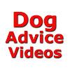 Dog Advice Videos