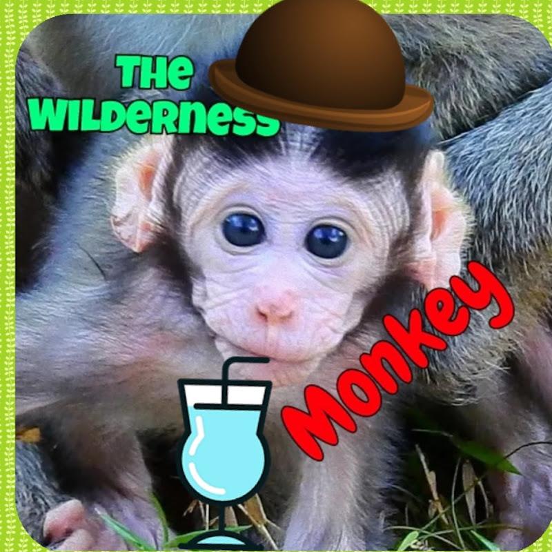 The Wilderness Cambodia