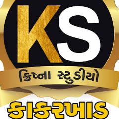 krishna Studio.kakarkhad