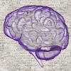 LearningRx Brain Training