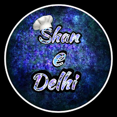 Shan e Delhi Net Worth