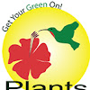 Plants For All Seasons