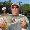 Action Belize since 1979