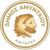 Dimos Amyntaiou