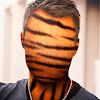 TigerXLine