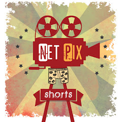 Net Pix Shorts Net Worth