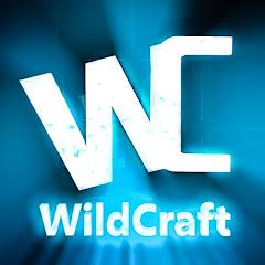 FuturisticHub Net Worth