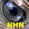 NewsHawk Network