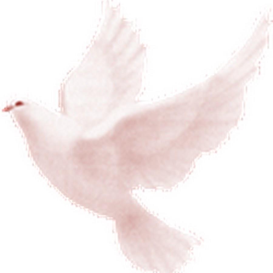 Картинка анимация голуби летят