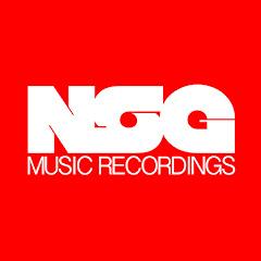 nsgmusic Net Worth