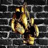 RX boxing