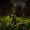 Elrolin Photo & Gaming