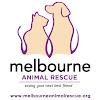 Melbourne Animal Rescue