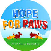 Hope For Paws - Official Rescue  Channel Videos