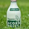 AcornOrganicDairy