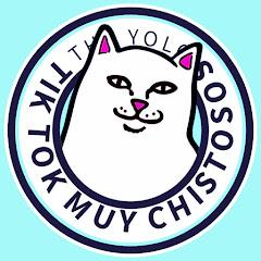 THE YOLO 2 Net Worth