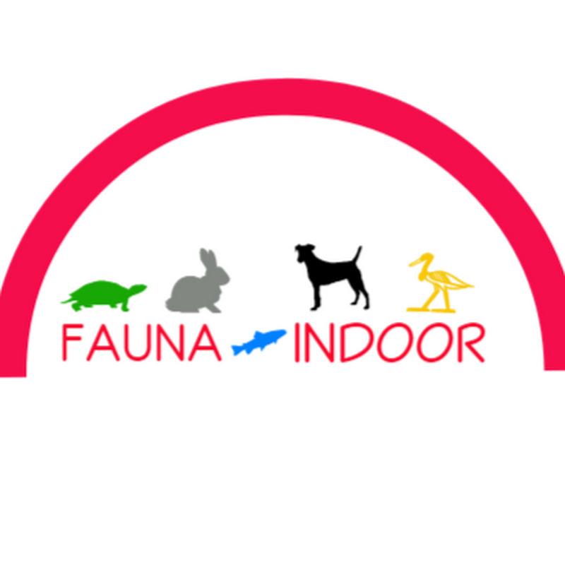 Fauna Indoor