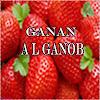 جـــنان الجنوب GANAN ALGANOB