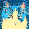 Kittys cats - Cat channel